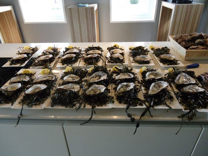 oysters_1